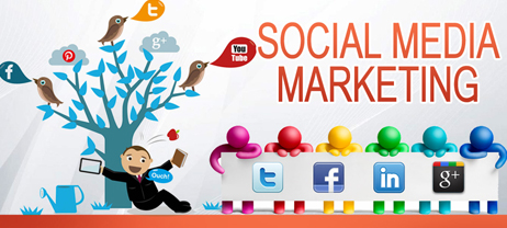 Exclusive Social Media Marketing Tools for Novice Business Owners